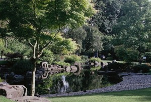 Image of Kyoto Gardens